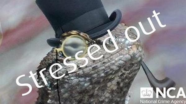 lizard-squad1_big
